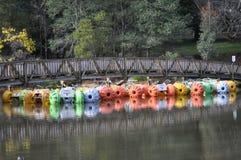 访问的鲜绿色湖公园 免版税图库摄影