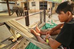 证券在大象一个培训中心 库存照片