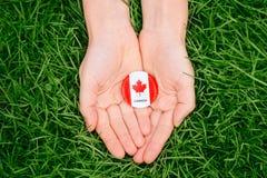 证章与在绿色森林自然背景的草的红色白色加拿大旗子枫叶外面,加拿大天 免版税库存图片