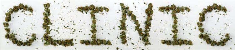诊所拼写用大麻 免版税库存照片