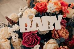 词'婴孩'从与玫瑰的一棵白色树在背景 库存照片