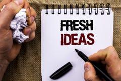 词文字文本新主意 创造性的人藏品写的视觉想法的想象力概念战略的企业概念 免版税库存图片
