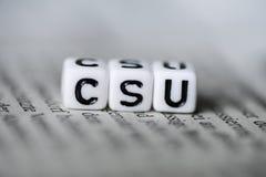 词CSU由在报纸德国党派政治的木字母表块形成了 库存图片