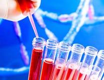 试管特写镜头有吸移管的在抽象脱氧核糖核酸序列背景的红色液体 免版税库存图片