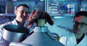 试验在实验室4k的科学家 股票视频