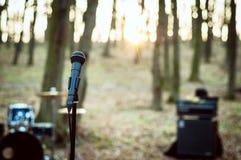 话筒接近在森林里在日落 库存照片