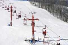 详细资料推力滑雪 免版税库存图片