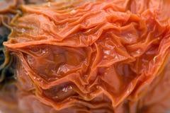 详细资料腐烂的皮肤蕃茄 免版税库存照片