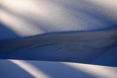详细资料随风飘飞的雪 免版税库存照片