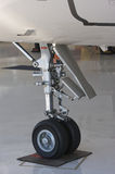 详细资料齿轮喷气机着陆 库存图片