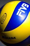 详细资料fivb排球 免版税库存图片