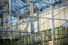 详述玻璃温室视窗 免版税库存照片