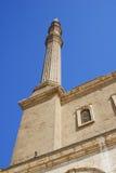 详述穆罕默德阿里清真寺  免版税库存照片