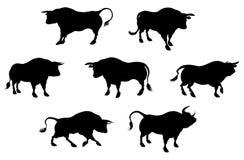 详细的公牛剪影 免版税库存图片