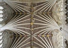 详细的天花板在埃克塞特大教堂里 库存照片