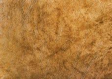 详细的皮革物质背景纹理 免版税库存照片