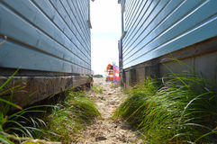 详细的观点的在海滩小屋之间的草 免版税图库摄影