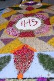 语科库domini christi庆祝的瓣和花地毯 免版税图库摄影
