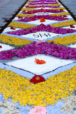 语科库domini christi庆祝的瓣和花地毯 库存图片