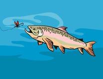 诱饵去的鳟鱼 免版税库存图片