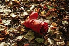 说谎在下落的叶子的儿童` s红色起动 免版税库存图片