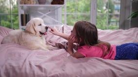 说谎在与小狗的舒适床上的女孩 股票录像