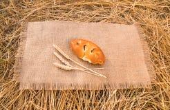 说谎在与麦子耳朵的一张桌布的一个新鲜的小圆面包 免版税库存图片