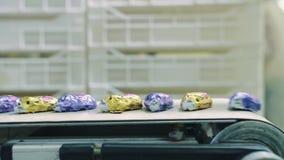 说谎在传动机的被包裹的糖果 糖果工厂 股票录像