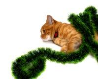 说谎在它的在圣诞节闪亮金属片和神色的边的红发小猫 库存图片