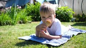 说谎在草坪的一个小男孩和愉快吃冰淇凌 热的夏日,冷的甜点心 影视素材