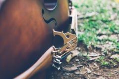 说谎在草的大提琴 免版税库存图片