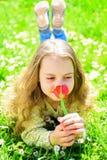 说谎在草,在背景的grassplot的女孩 青年时期和无忧无虑的概念 微笑的面孔的女孩拿着红色郁金香花 库存照片