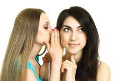 说闲话二名妇女 库存图片