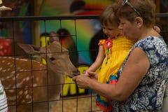 请与动物园,有孙的祖母联系看动物 免版税图库摄影