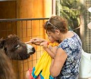 请与动物园,有孙的祖母联系看动物 免版税库存照片
