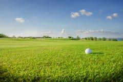 请检查俱乐部高尔夫球例证更多我投资组合炫耀 绿色领域和球在草 免版税库存图片