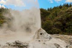 诺克斯喷发在罗托路亚,新西兰的Geyser夫人 免版税图库摄影