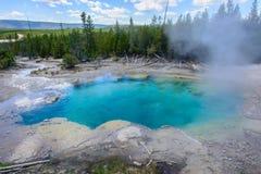 诺哩斯喷泉水池,黄石国家公园,怀俄明,美国 免版税库存图片