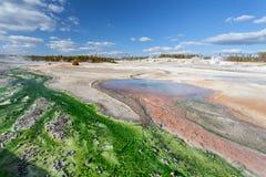 诺哩斯喷泉水池黄石,怀俄明,美国 库存图片