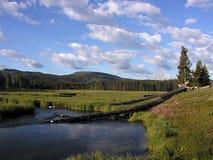从诺哩斯营地的长臂猿河在黄石国家公园 免版税图库摄影