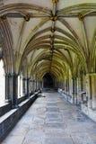 诺威治大教堂修道院,诺福克,英国 免版税库存照片