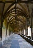 诺威治大教堂曲拱 图库摄影