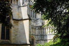 诺威治大教堂,诺福克,英国 图库摄影