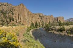 诺思Fork在黄石国家公园东部的肖松尼人河在Cody怀俄明附近 库存照片