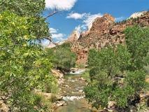 诺思Fork维尔京河在锡安国家公园 免版税库存照片
