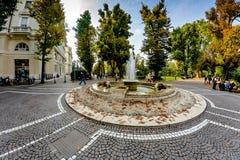 诺瓦腊,意大利- 2016年10月17日:摆正与一个喷泉在城市公园 库存照片