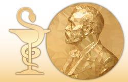诺贝尔化学奖、金多角形奖牌和化学标志 皇族释放例证