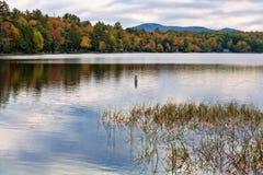 诺顿池塘在Lincolnville,缅因 库存图片