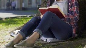 读浪漫小说的夫人在公园,担心书英雄,畅销品 股票录像