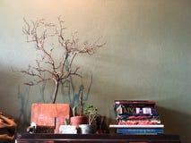 读Conner在与黑暗的光的咖啡馆,葡萄酒样式 库存照片